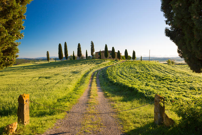 Сельский дом с кипарисом и голубыми небесами, Pienza, Тосканой, Италией стоковая фотография rf