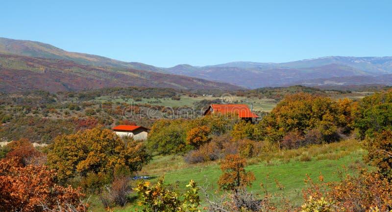 Сельское Колорадо стоковое фото rf