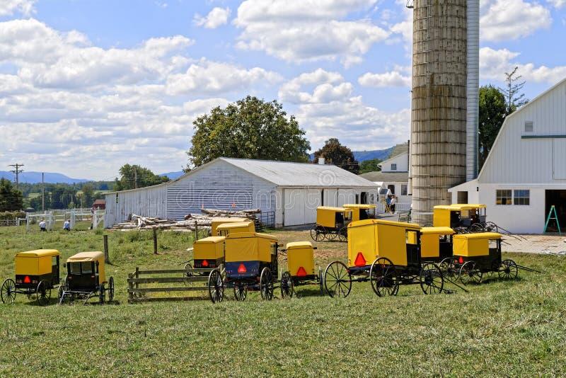 Сельскохозяйственные строительства картины молодости Амишей стоковые фотографии rf