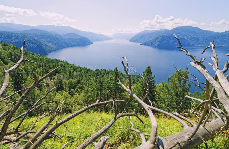 Сибирь, озеро Teletskoye взгляд долины Украины горы Крыма стоковое изображение rf