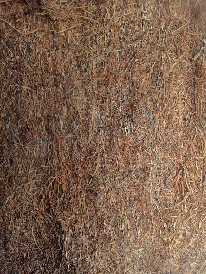 Сигарета garut табака традиционная стоковое фото