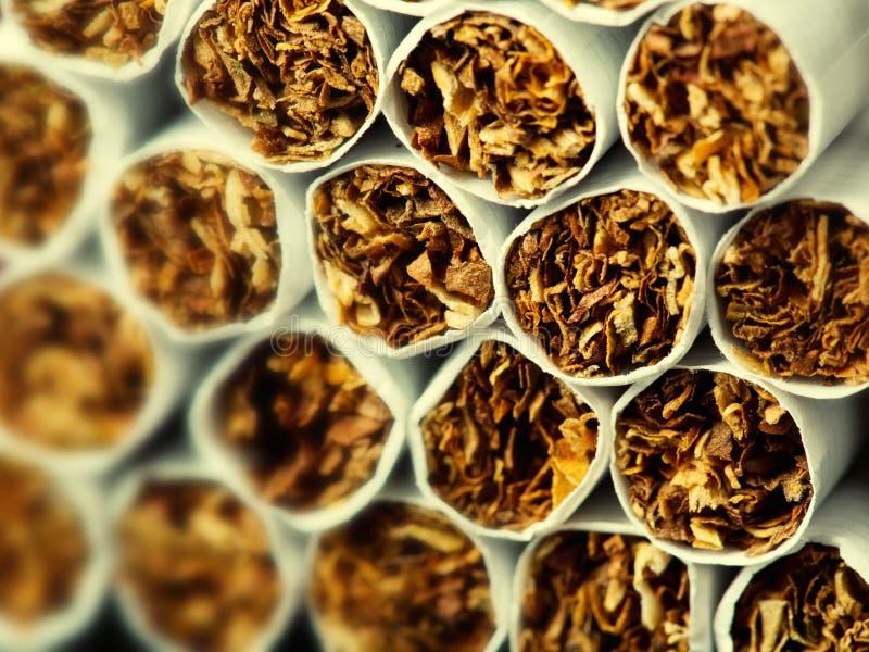 Сигареты в пакете стоковое фото rf