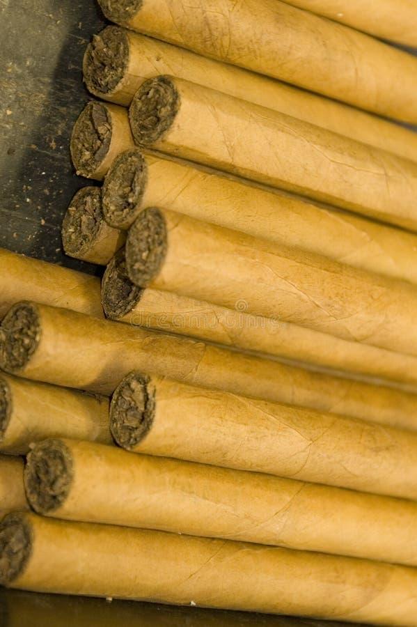 сигары вручают свернуто стоковое изображение rf