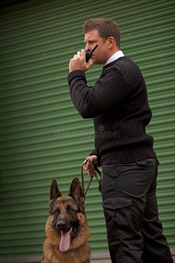 Сигнал тревога собаки стоковые фото
