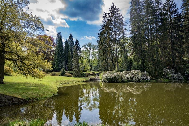 Сидеть в парке в чехии Pruhonice Праги стоковое фото rf