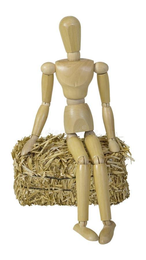 Сидеть на связке сена стоковое изображение