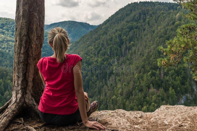 Сидеть на скале стоковые изображения rf