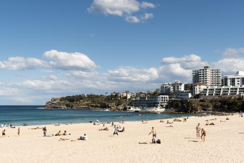 Сидней, NSW/Australia: Пляж Bondi с бассейном айсберга на заднем плане и серферами стоковые изображения