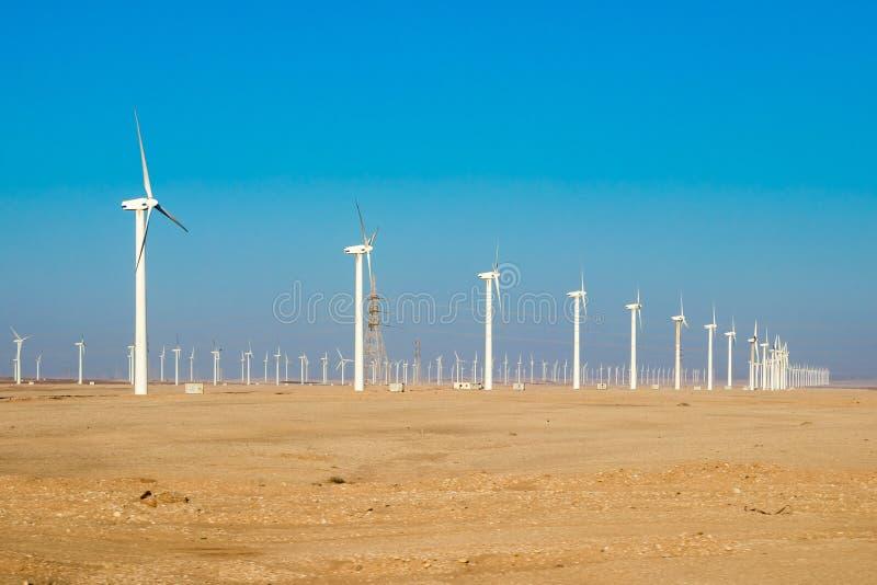 Сила производя ветровую электростанцию в Египте стоковая фотография rf