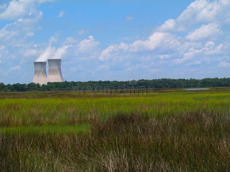 сила ядерной установки болотоа florida следующая к стоковая фотография