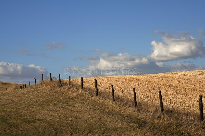 силовая линия поля загородки стоковые фото