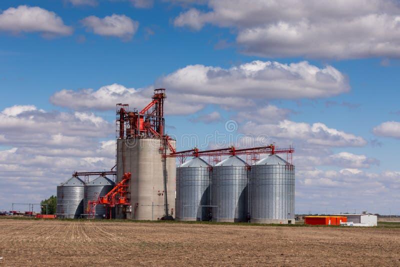 Силосохранилища земледелия в поле Канады стоковая фотография