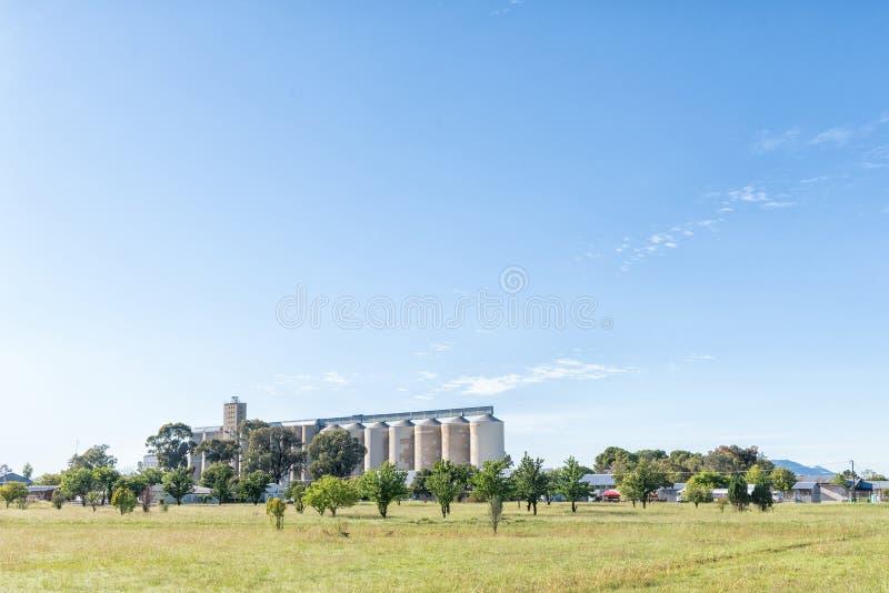 Силосохранилища зерна на Tweespruit в провинции освободившееся государство стоковые изображения rf