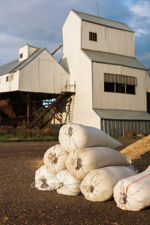 Силосохранилища хранения зерна Зернохранилище с механическим оборудованием для получать, очищать, суша, пересылка зерна стоковое фото rf