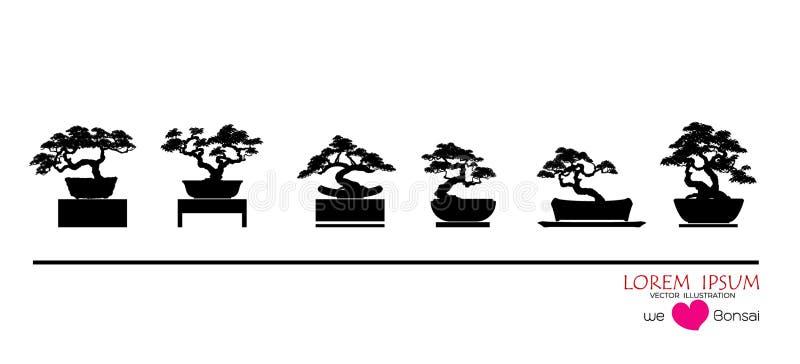 силуэты ฺBlack деревьев бонзаев в баках на таблице стоковые изображения rf