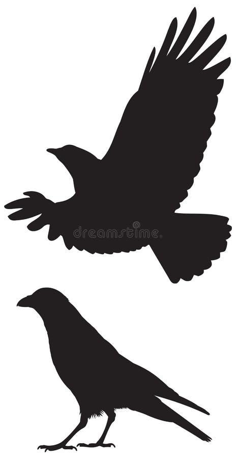 Силуэты вороны иллюстрация вектора