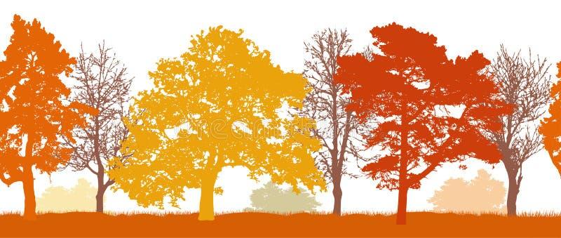 Силуэты деревьев осени паркуют, картина леса безшовная r иллюстрация вектора