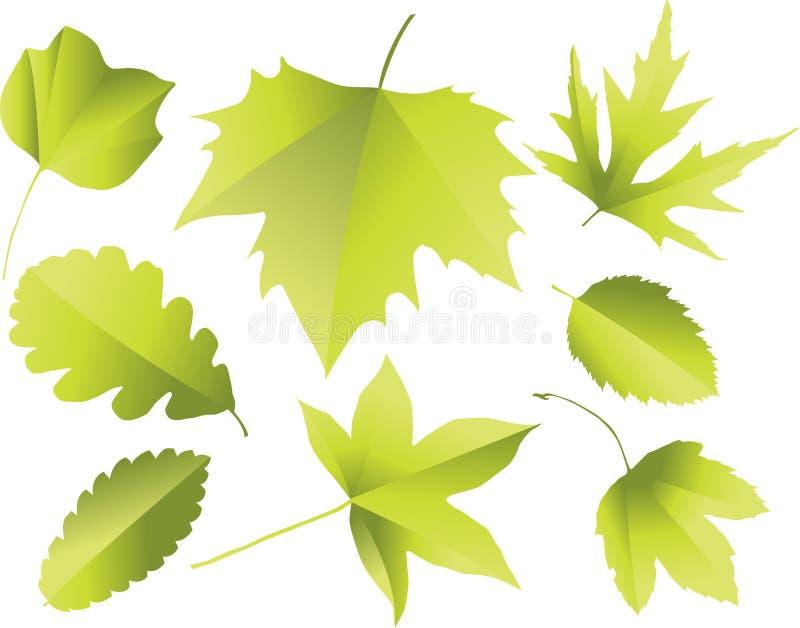 силуэты листьев иллюстрация вектора