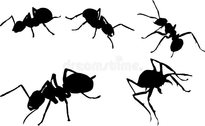 силуэты муравея установленные бесплатная иллюстрация