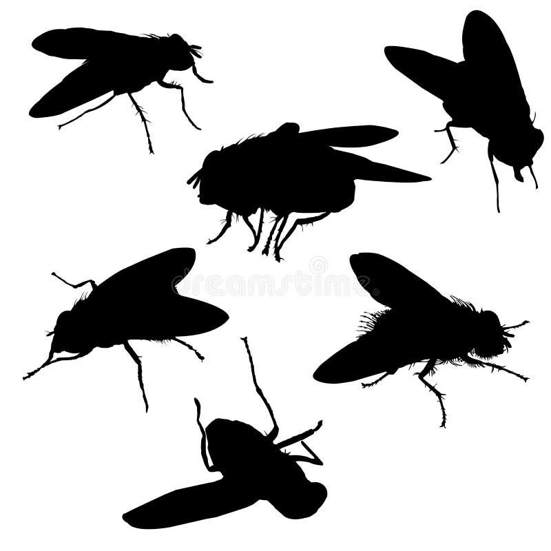 силуэты мухы иллюстрация вектора