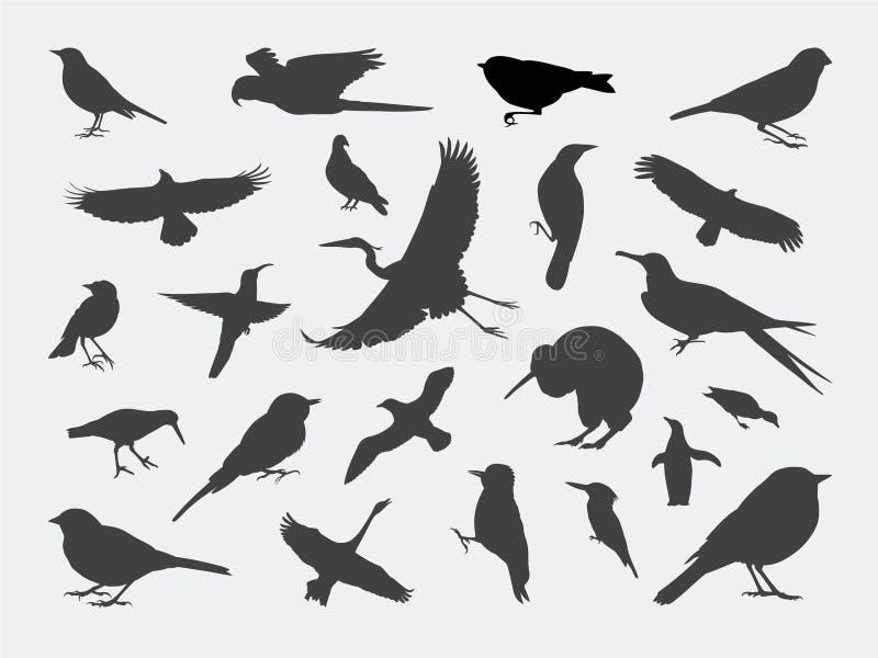силуэты птицы бесплатная иллюстрация