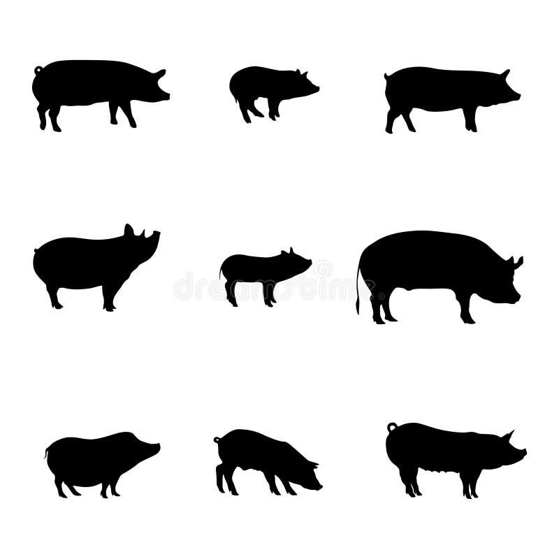 Силуэты свиней E Магазин мяса r иллюстрация вектора