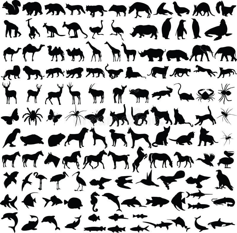 силуэты собрания животных иллюстрация вектора