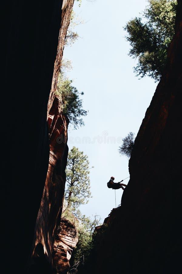 Силуэт альпиниста взбираясь утес во время дневного времени на национальном парке Сион, США стоковые изображения