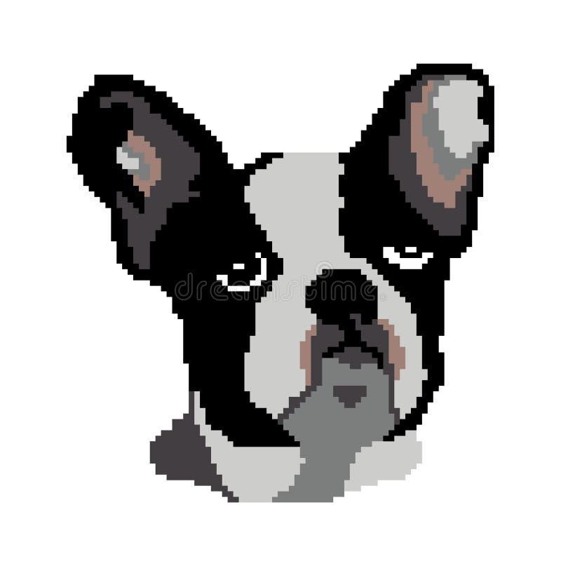 Силуэт бульдога породы черной собаки французского сторона, голова которой покрашена в форме квадратов, пикселы стоковое изображение rf