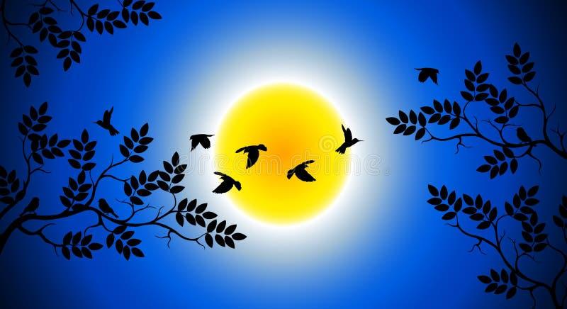Силуэт вала с летанием птицы бесплатная иллюстрация