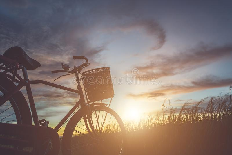 Силуэт велосипеда стиля Японии классического на поле стоковые фото
