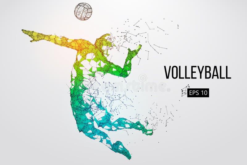 Силуэт волейболиста также вектор иллюстрации притяжки corel