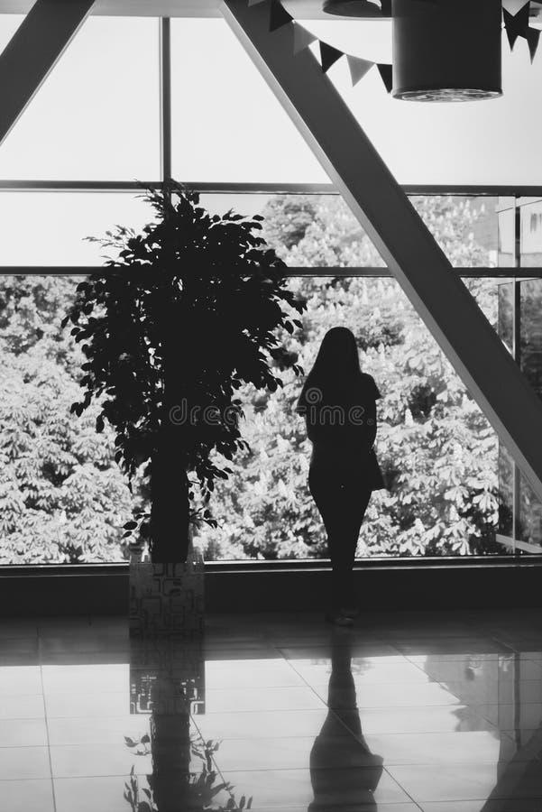 Силуэт девушки и дерева перед большим окном стоковое фото rf