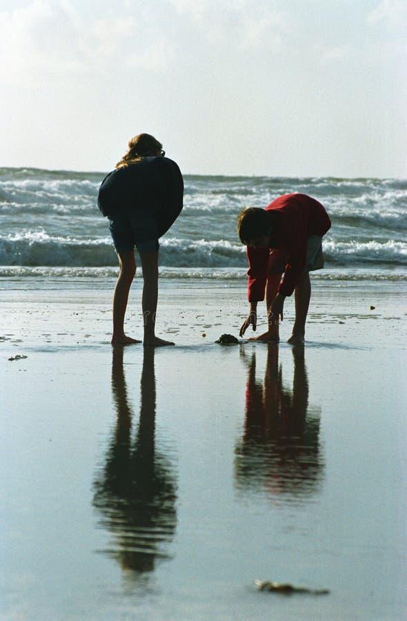 силуэт детей пляжа стоковые изображения
