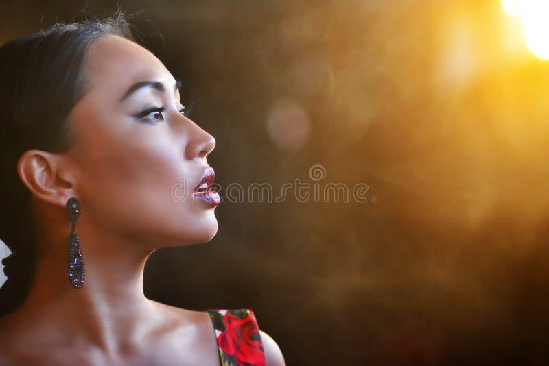 Силуэт женской стороны на предпосылке захода солнца стоковые фото