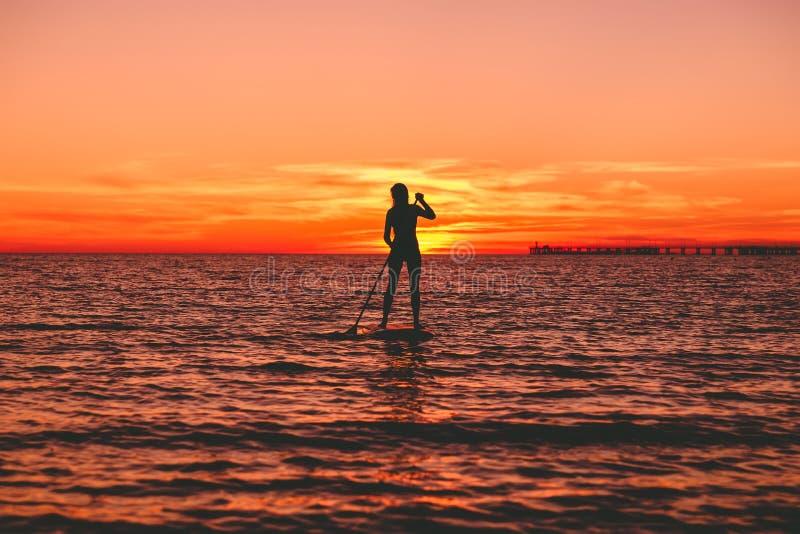 Силуэт женщины на стоит вверх доска затвора на тихом море с яркими заходом солнца или восходом солнца стоковое фото rf