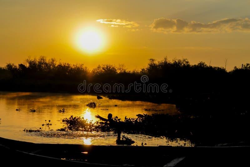 Силуэт захода солнца шлюпки на озере стоковые фото