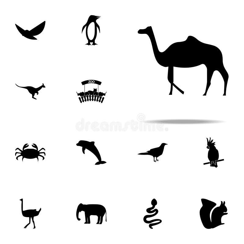 силуэт значка верблюда набор значков зоопарка всеобщий для сети и черни иллюстрация штока