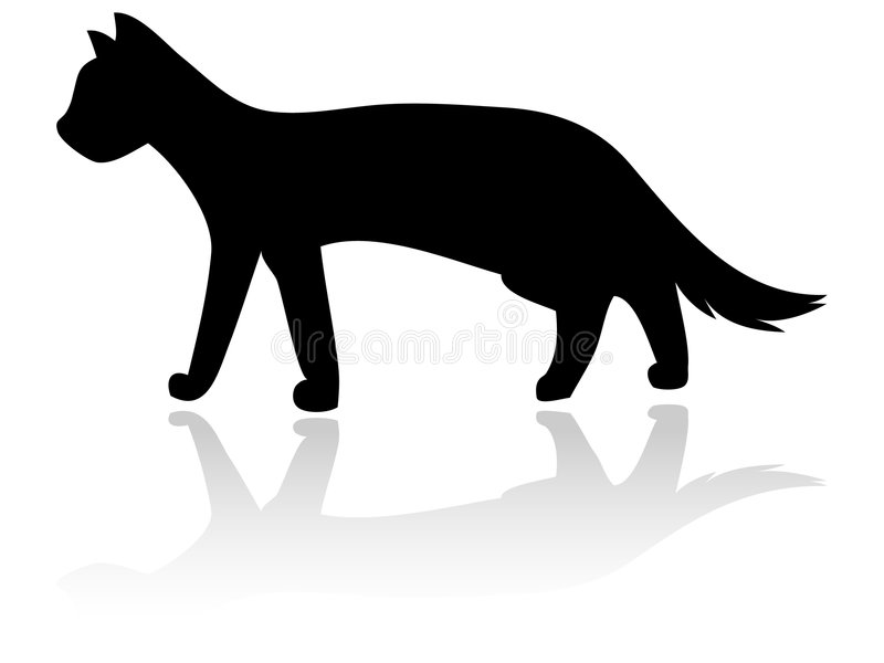 силуэт кота Стоковое Изображение