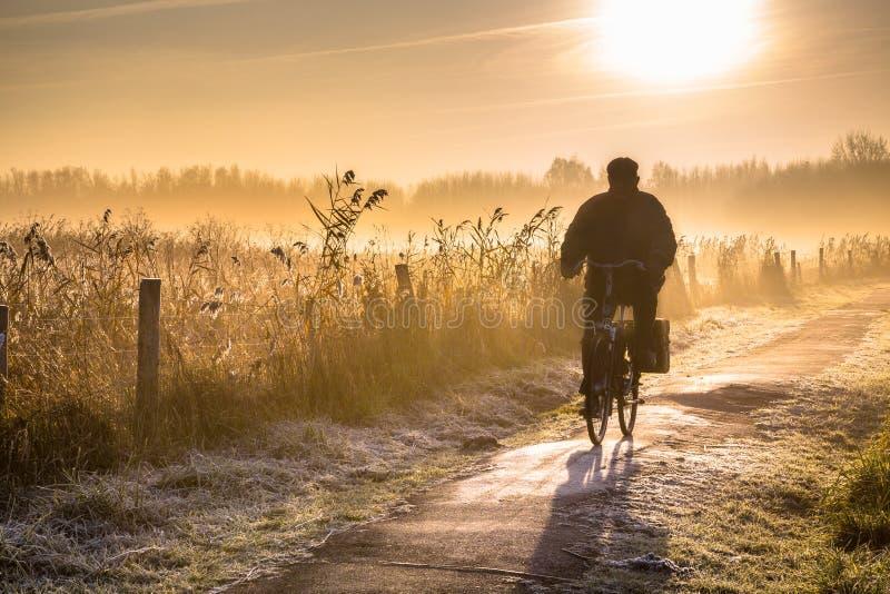 Силуэт ландшафта велосипедиста стоковая фотография rf