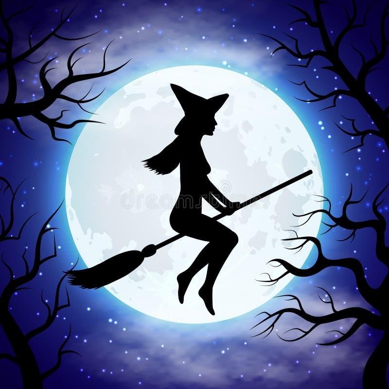 Картинки ведьма на метле с котом, открытка для