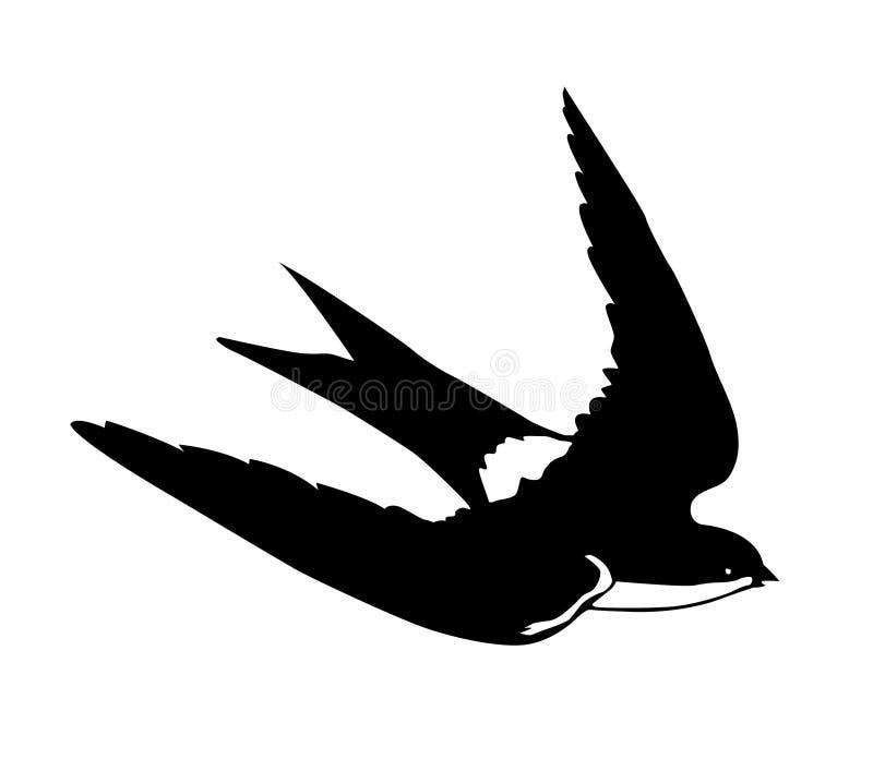 силуэт летания заглатывает вектор иллюстрация вектора