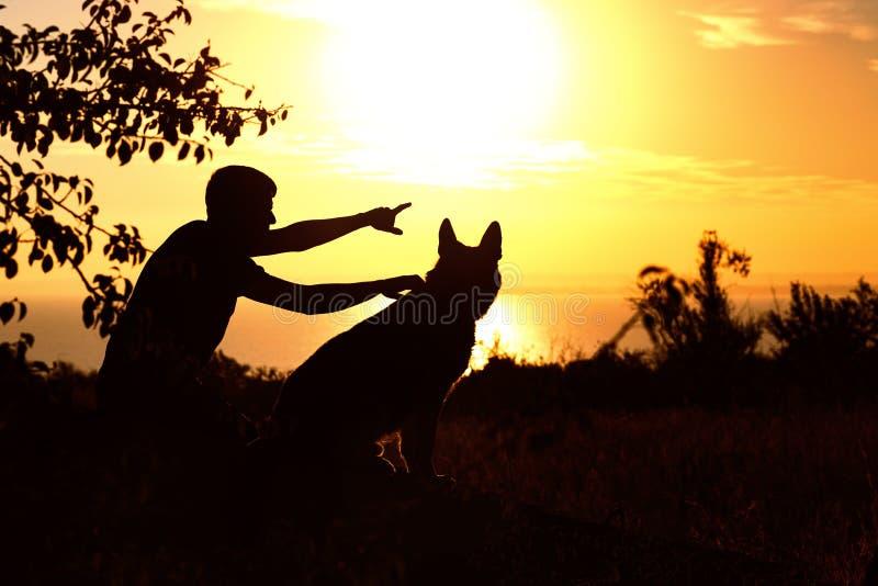 Силуэт молодого человека и собаки наслаждаясь природой, немецкой овчаркой показа мальчика на заходе солнца в поле, человеком прия стоковая фотография rf