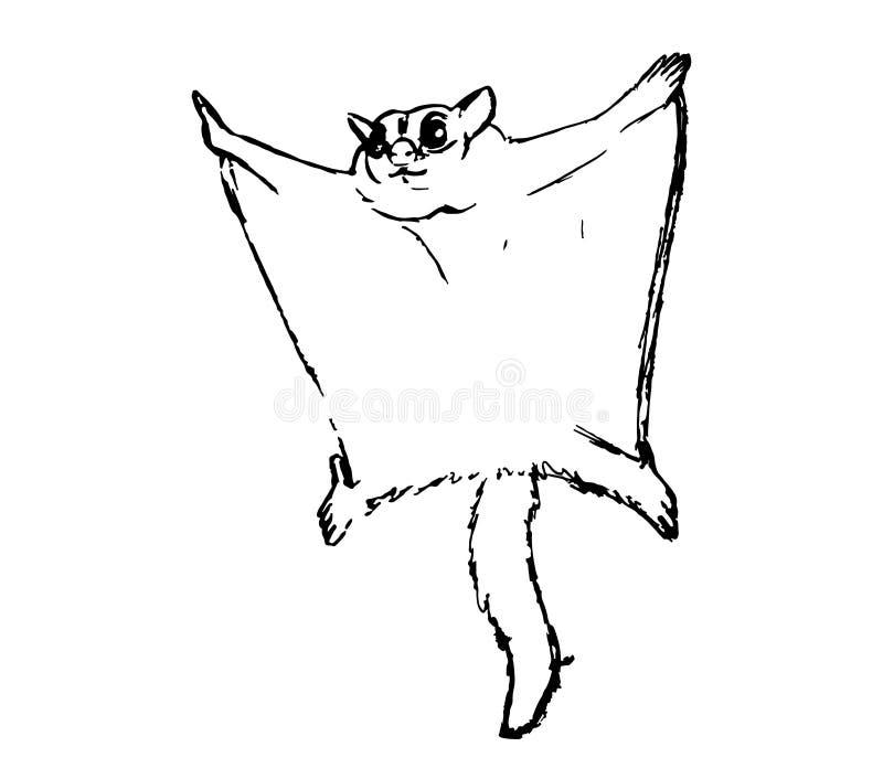 Силуэт мухы сахара сумчатой, или posum летания сахара бесплатная иллюстрация
