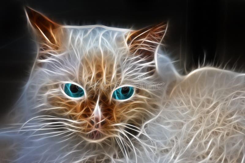 Силуэт намордника накаляя кота с голубыми глазами стоковая фотография rf