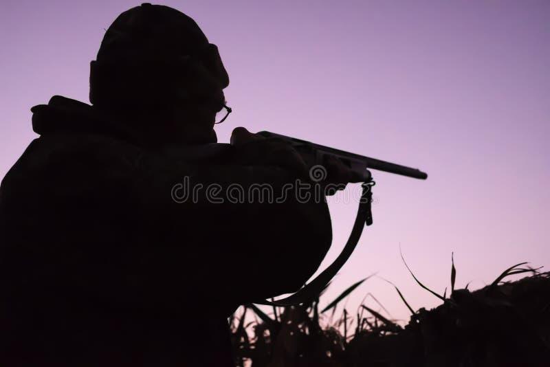 Силуэт охотника с оружием на восходе солнца на озере перерастанном с тростниками стоковое изображение
