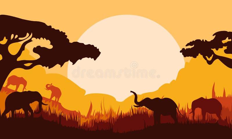 Силуэт предпосылки слонов в лесе иллюстрация штока