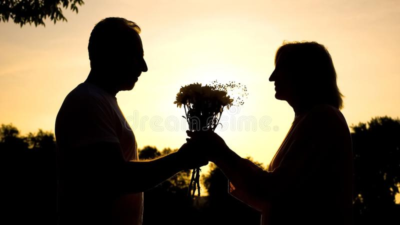 Силуэт счастливой встречи пар на заходе солнца, экономно расходует представляющ цветки на дате стоковые изображения rf