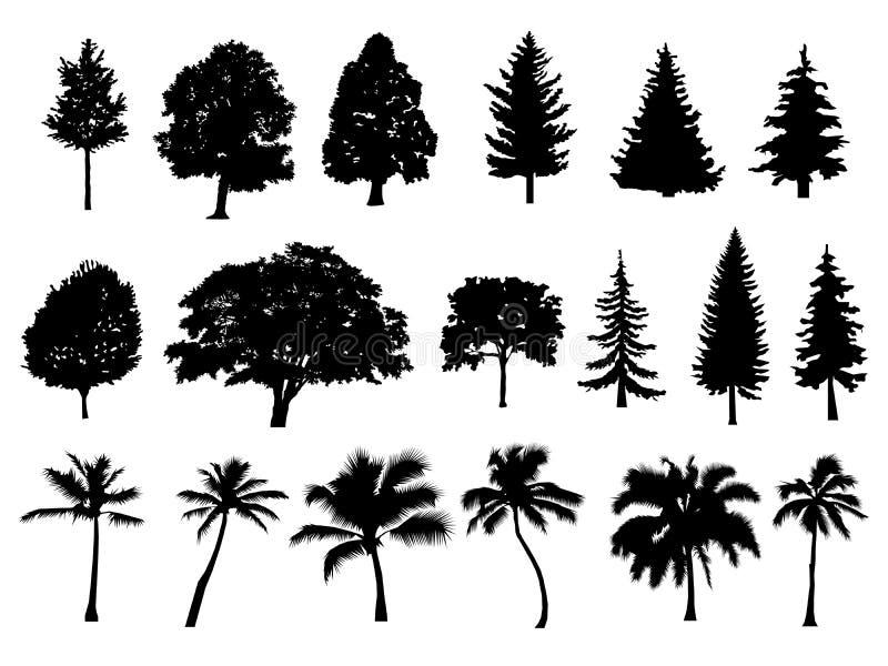 Силуэт установленный деревьями Coniferous дерево изолированное лесом на белой предпосылке ладонь также вектор иллюстрации притяжк иллюстрация вектора