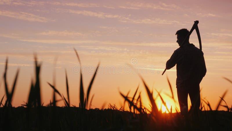 Силуэт фермера в поле Смотрит вперед, держит косу для косить траву за его плечом стоковые изображения